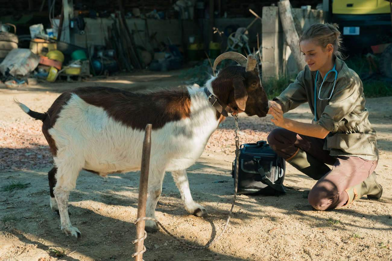 Noémie Schmidt plays a young veterinarian who has just graduated, and who will have to prove herself before she can tame the villagers.