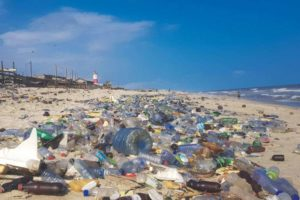 The scourge of plastic (wikimedia commons)