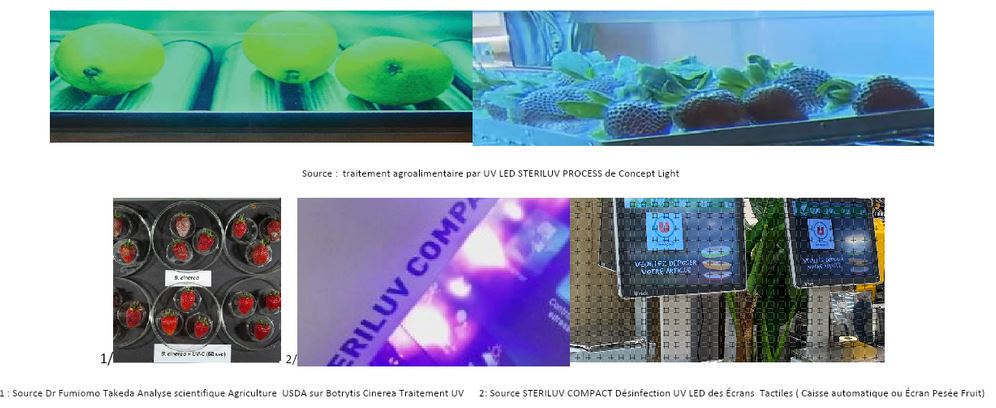 Source : 1 Dr Fumiomo Takeda - USDA UV treatment on Botrytis Cinerea 2 STERILUV COMPACT UV LED disinfection of touch screens (automatic cash register or fruit and vegetable weighing screen)