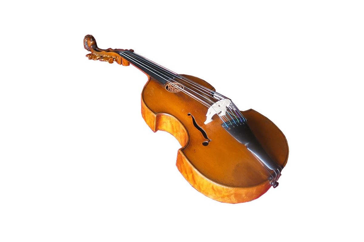 A viola d'amore